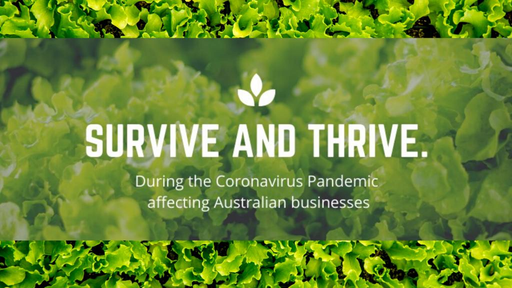 coronavirus employer support